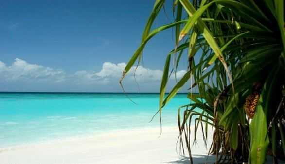 Die malediven urlaub im paradies die inselgruppe der malediven im